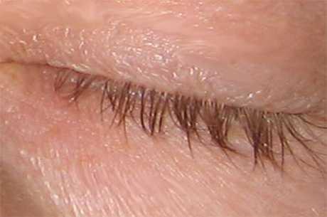 Lange øjenvipper